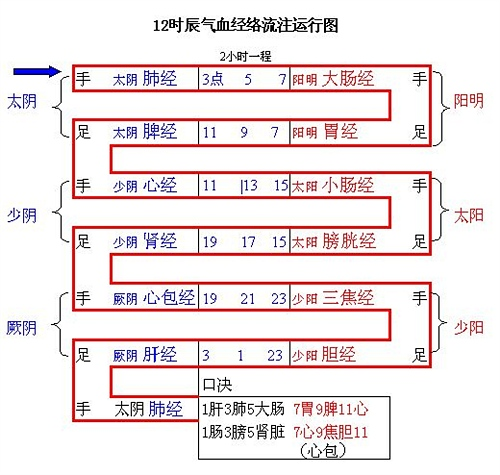 中医五行阴阳经络彩图